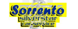 Sorrento Silver Star - Amalfi Coast Tours - Car Service - Private Driver